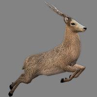 3d royal deer rigged games model