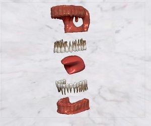 3D teeth gum