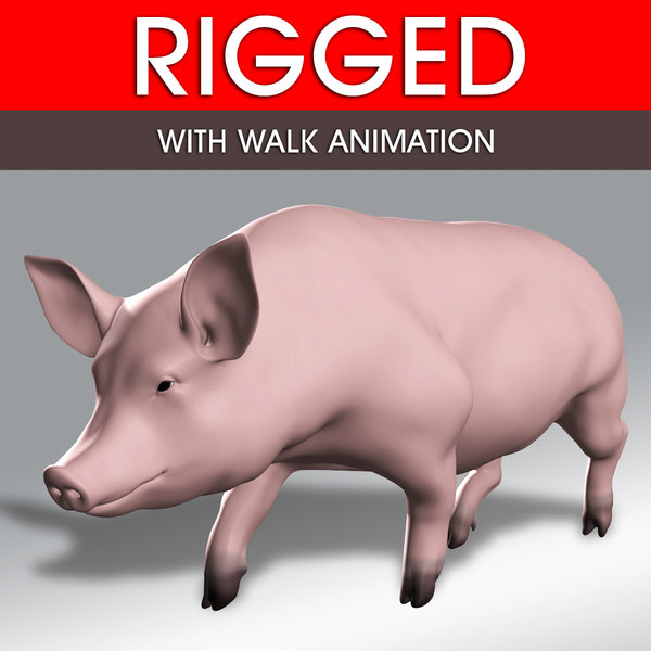 3D pig rigged