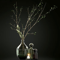 Decorative set of colored glass bottles with branches