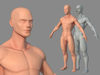 Character - Male Body Base Stylized