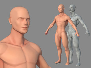 3D character male body base model