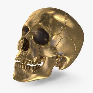 bronze human skull 3D model