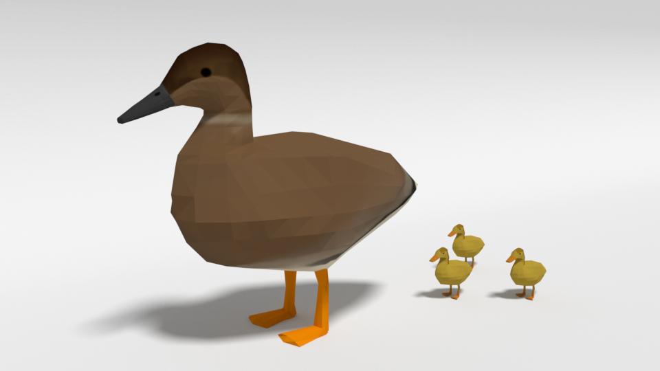 3D gadwall duck