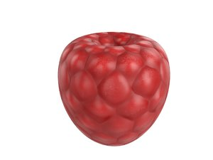 3D rasberry cartoon