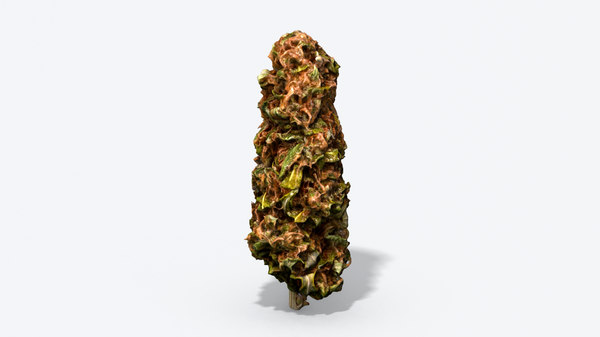 marijuana bud photoscanned pbr model