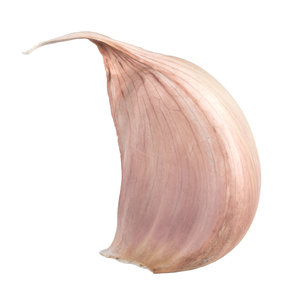 3D photorealistic scanned garlic clove