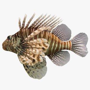 3D lionfish scanline