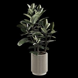 3D indoor plants set 06