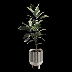 indoor plants set 07 model