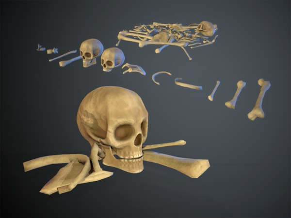 3D skulls1 stylized bones model