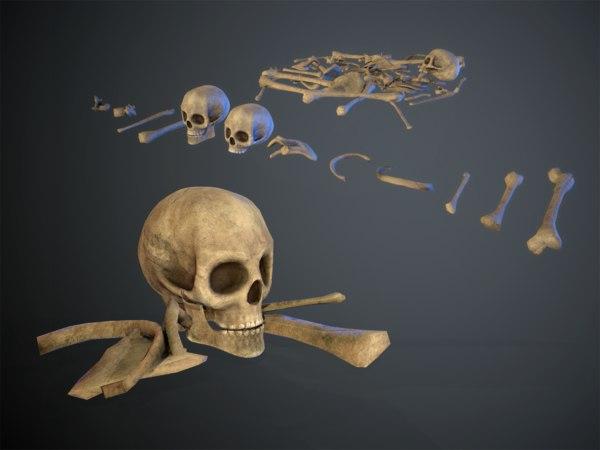 skulls1 old bones 3D model