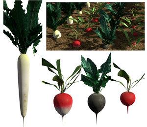 3D pack radish crops plant
