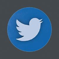 twitter logo model