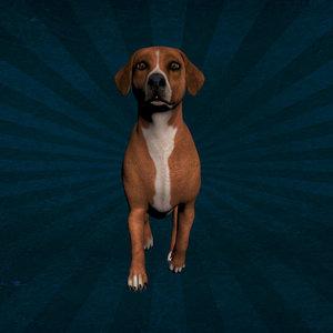 dog walk 3D model