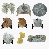 stone landscape nature 3D model