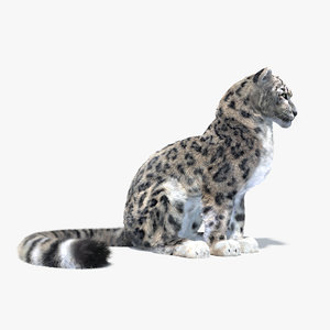 rigged snow leopard animation max