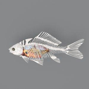 fish bones viscera 3D model