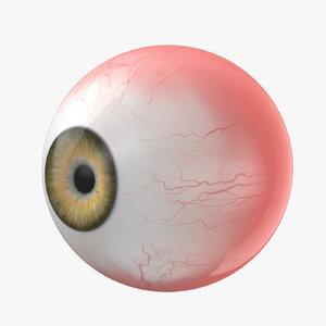 eye rigged - model