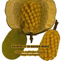 3D jackfruit fruit jack