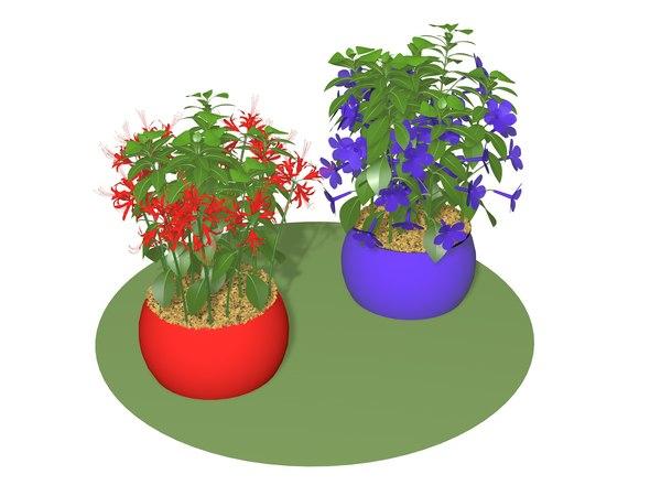 3D model flora flower