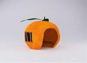 3D orange house model