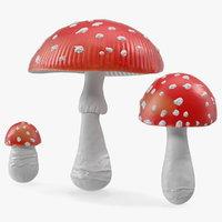 amanita mushrooms set 3D model