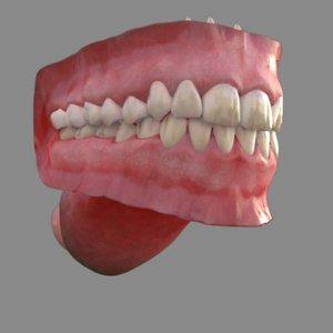 3D human mouth