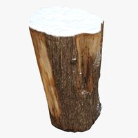 tree trunk stump snow model