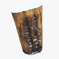 3D model tree trunk stump snow