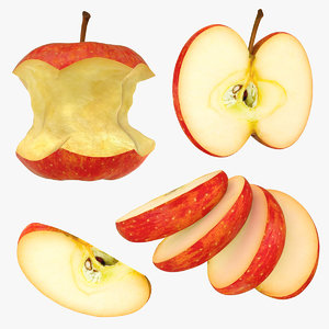 3D model realistic apple slice