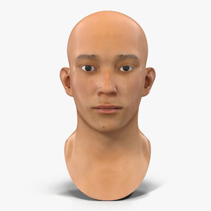 3D asian male head rigged model