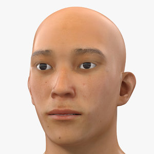 3D model asian male head rigged