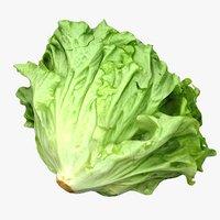 Salad Head 02