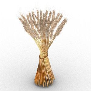 3D wheat grains spike