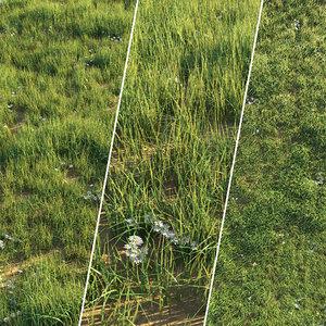 set lawn grass 3D model