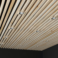 ceiling overhead donolux 3D model