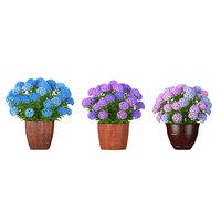 3 colorful hydrangea flowers