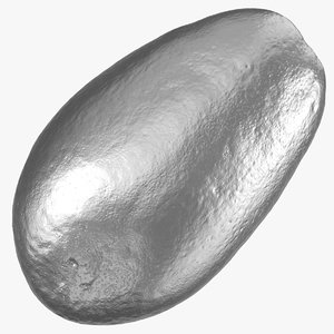 3D bacon avocado 01 silver