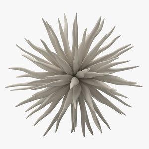 3D decoration 08 sea urchin