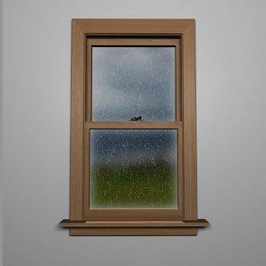 3D rain window model