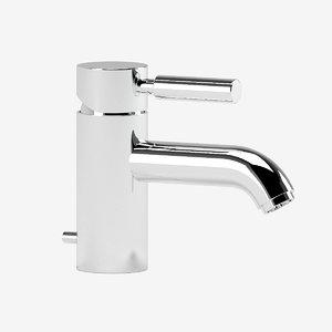 3D dorn bracht grande basin model