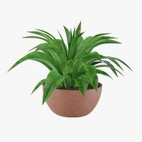 plant 3 3D model
