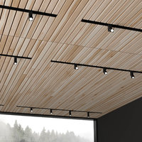3D ceiling overhead donolux