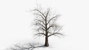 tree 002 3D model