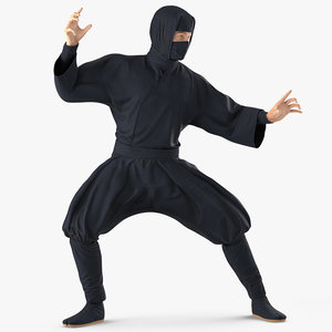 ninja rigged model