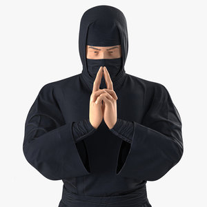 3D ninja rigged model