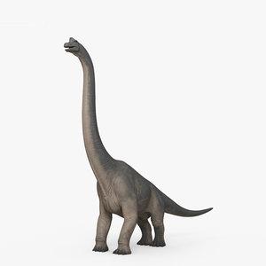brachiosaurus dinosaurs 3D model