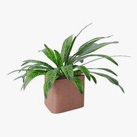 plant 4 3D