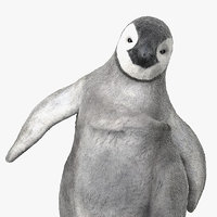 3D baby emperor penguin rigged
